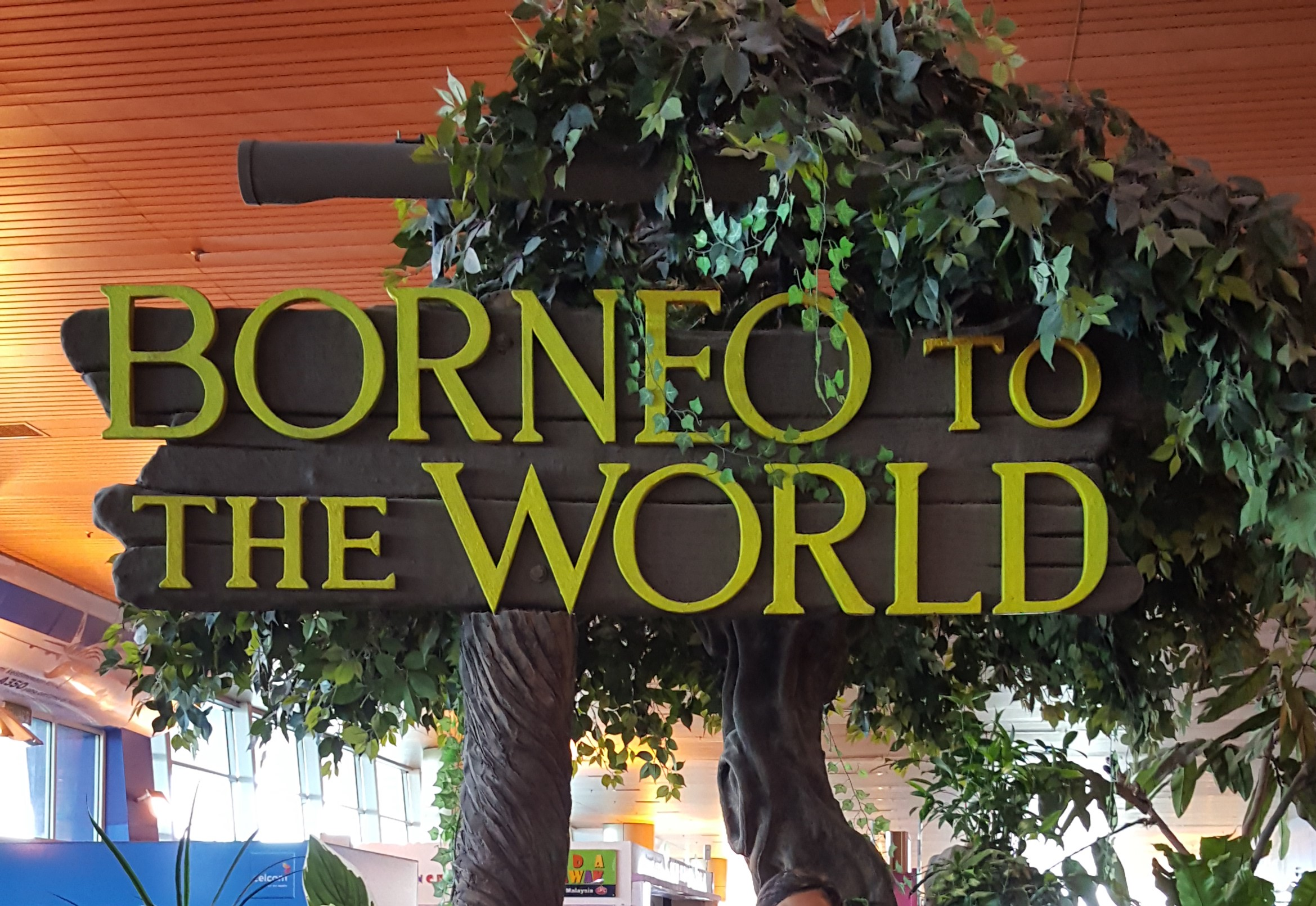 Bornéo to the world